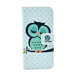 Sweet Owl Leather Flip Wallet Case Cover for iPhone 5s / iPhone 5
