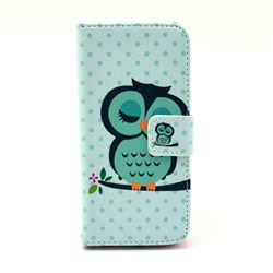Sweet Owl Leather Flip Wallet Case Cover for iPhone 5c